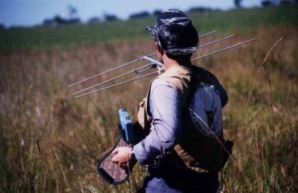 radiotelemetria_fauna_monitoramento_vida_selvagem